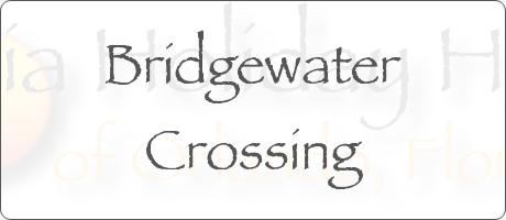 Bridgewater Crossing Davenport Orlando Florida