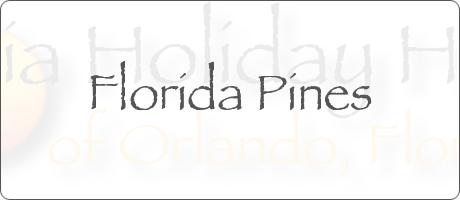 Florida Pines Davenport Orlando Florida