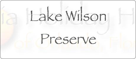Lake Wilson Preserve Davenport Orlando Florida