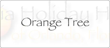 Orange Tree Clermont Orlando Florida