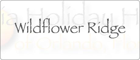 Wildflower Ridge Davenport Orlando Florida